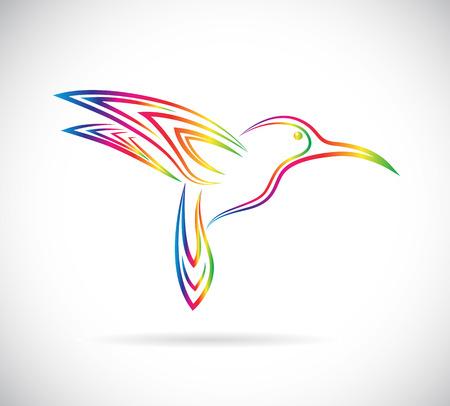 Vector image of an hummingbird design on white background Stock Illustratie