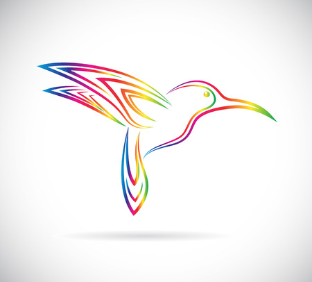 Vector image of an hummingbird design on white background Ilustracja