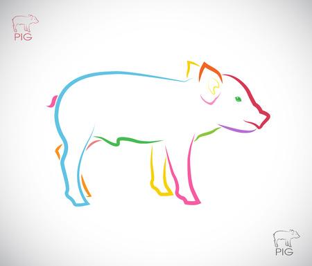 白い背景の上の豚のベクトル画像  イラスト・ベクター素材