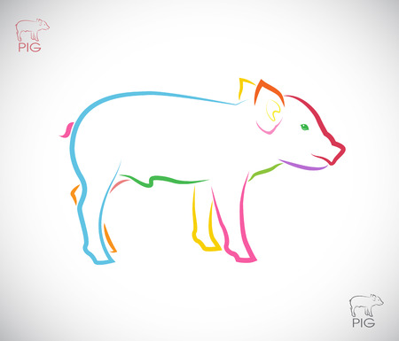 Vector image of a pig on white background Vector