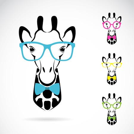 jirafa fondo blanco: Vector de imagen de una jirafa gafas sobre fondo blanco. Vectores