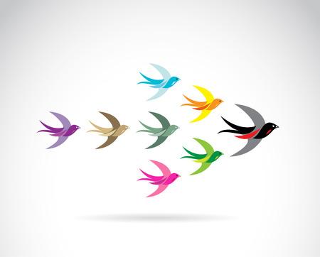 golondrinas: Grupo de aves golondrina de colores. Concepto de trabajo en equipo