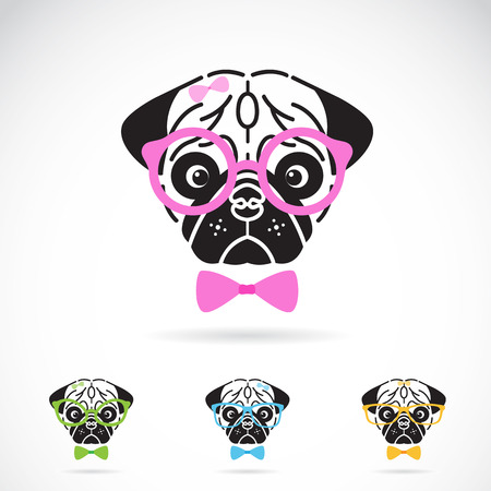 glass modern: image of a dog glasses on white background. Fashion
