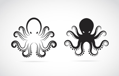 black octopus: image of an octopus on white background. Illustration
