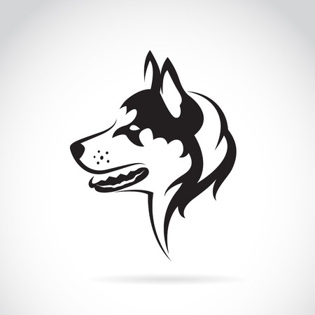 Vector image of a dog siberian husky on white background Stock Illustratie