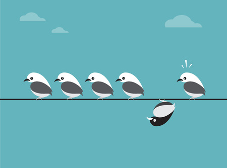 incompatible: image of birds group. Different concepts