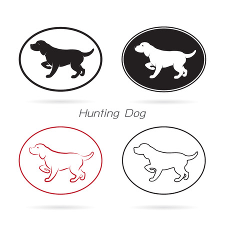 Vector image of an dog hunting on white background.