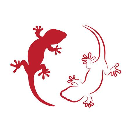 salamander: Vector Bild von einem Gecko auf wei�em Hintergrund