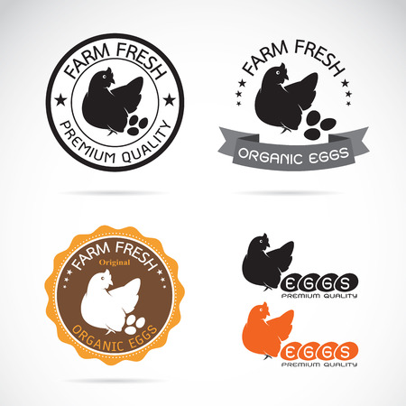 Set of an chicken and eggs label on white background Vector