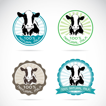 protein crops: Set of vector an dairy cows label on white background Illustration