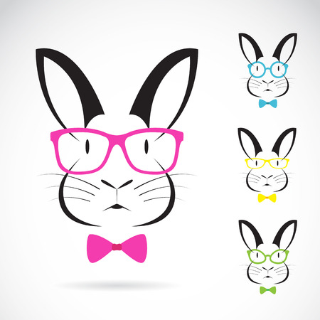 Vector image of a rabbits wear glasses on white background.