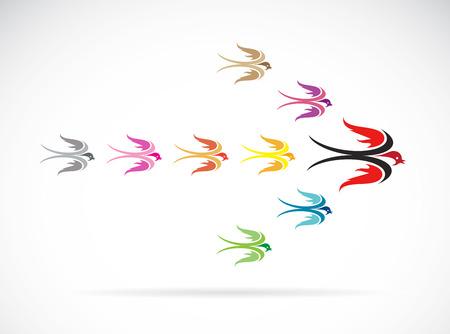 Vector group of colorful swallow birds. Teamwork concept