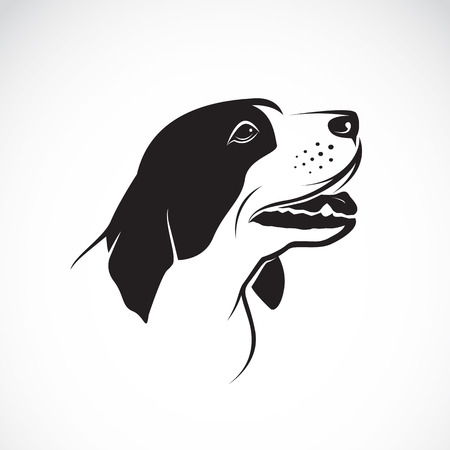 Vector image of an dog on white background Vector
