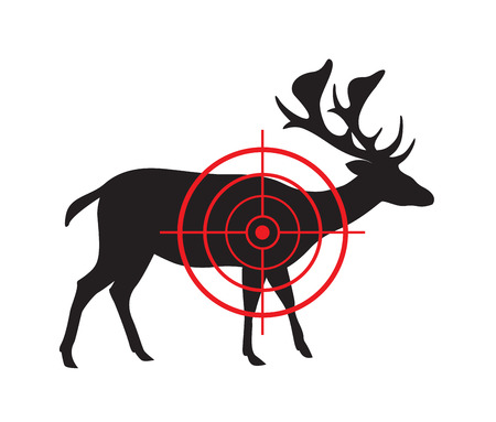cervidae: Vector image of a deer target on a white background.