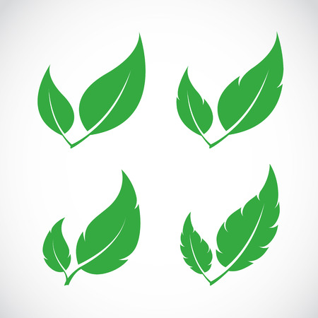 plant design: Vector leaves icon set on white background