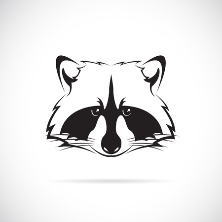 Vector image of a raccoon face on white background Vector