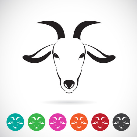 Vector image of an goat head on white background Vector
