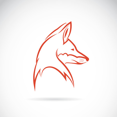 Vector image of an fox head on white background 向量圖像