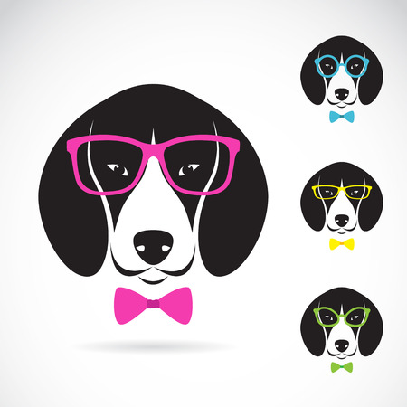 vector images: Vector images of dog beagle wearing glasses on white background.