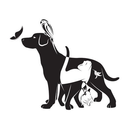 veterinario: Grupo de vector de animales domésticos - perro, gato, pájaro, mariposa, conejo, aislado en fondo blanco