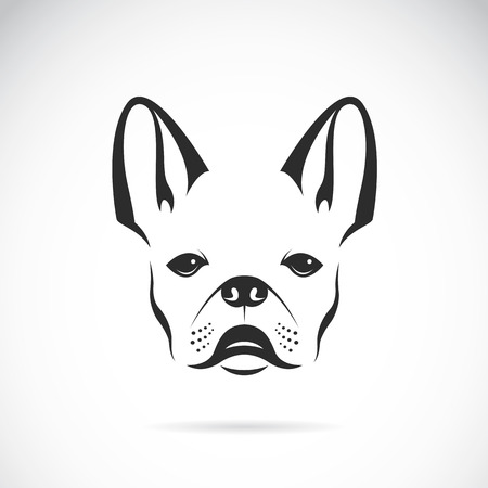 Vector image of an dog (bulldog) on white background Vector