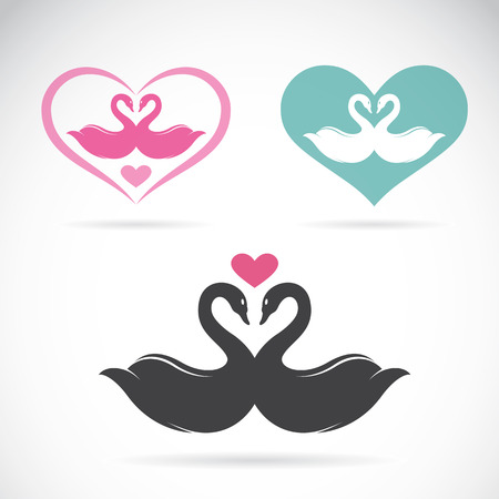 Vector image of two loving swans Vector