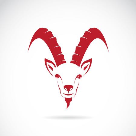 Vector image of goat (chamois) on white background Vector