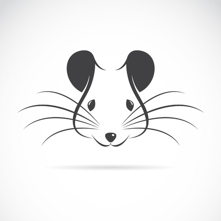 rodent: Vector image of an rat head on white background