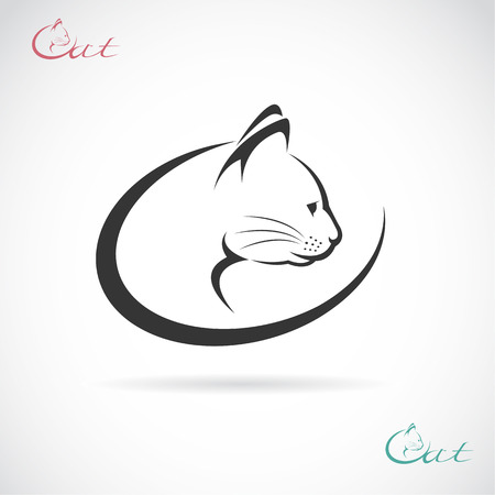 kotów: Vector obraz wzoru kot na białym tle. Ilustracja