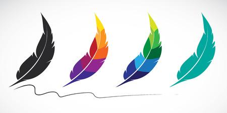 pluma blanca: Grupo de vector de plumas en el fondo blanco