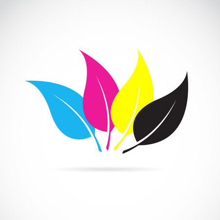 inkjet: Vector image of an leaves in cmyk colors on white background