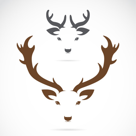 Vector Bild von einem Hirschkopf auf weißem Hintergrund