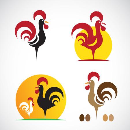 gallo: Imagen vectorial de un dise�o de pollo en el fondo blanco Vectores