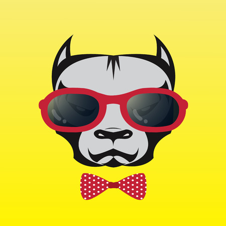 vector images: Vector images of a dog wearing glasses on yellow background.