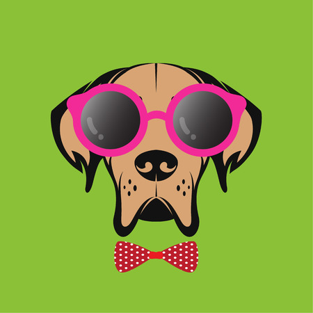 Vector images of a dog wearing glasses on green background. Vector