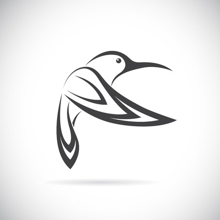 small: Vector image of an hummingbird design on white background Illustration