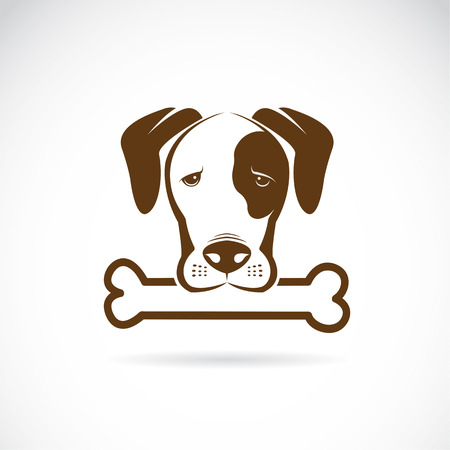 Vector image of an dog and bone on a white background.