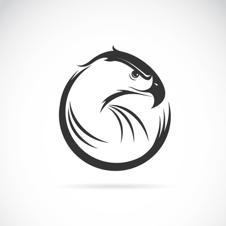 eye tattoo: Vector image of an eagle design on white background