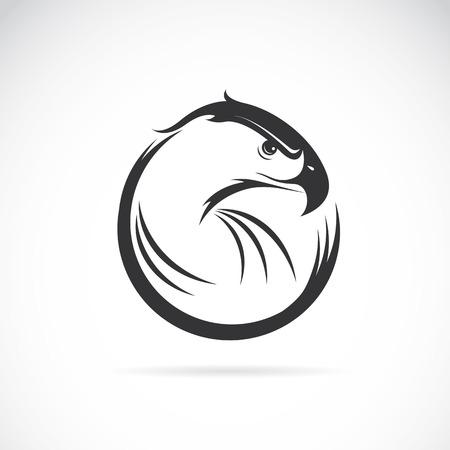 animal eye: Vector immagine di un disegno aquila su sfondo bianco Vettoriali