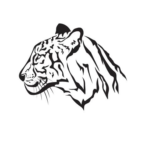 silueta tigre: Vector de imagen de un tigre en el fondo blanco Vectores