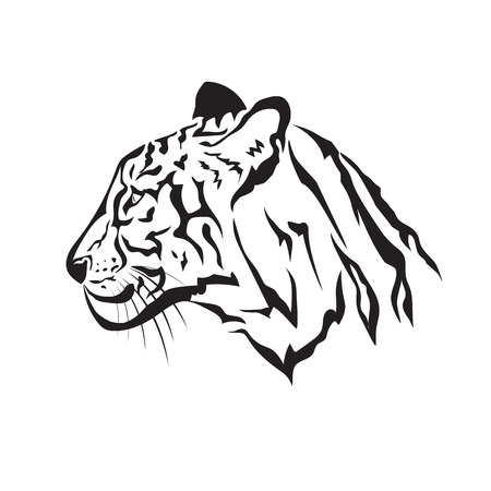 black and white image: Vector image of an tiger on white background