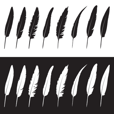 Vector group of feather on white background and black background
