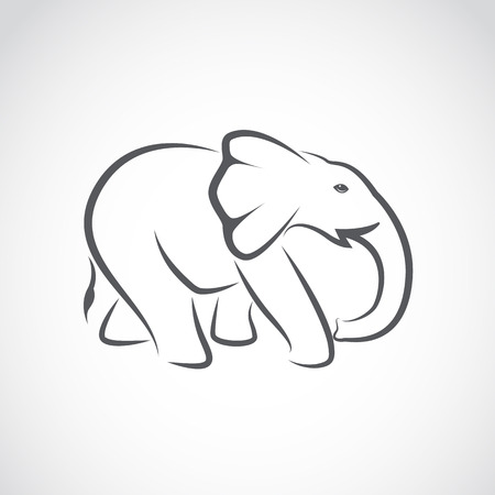 standing in line: Vector image of an elephant on white background Illustration