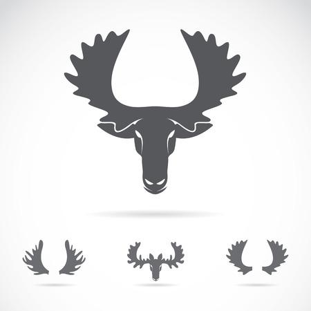 Vector afbeelding van een eland hoofd op een witte achtergrond