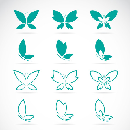 Vector group of butterfly on white background.