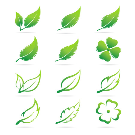 verdant: Vector leaves icon set on white background