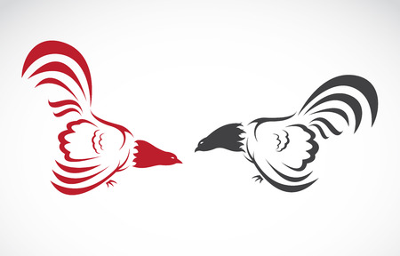 food fight: Vector image of an cock on white background