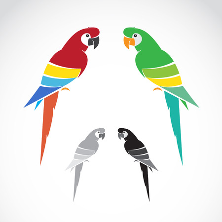 stylised: Vector image of a parrot on white background.
