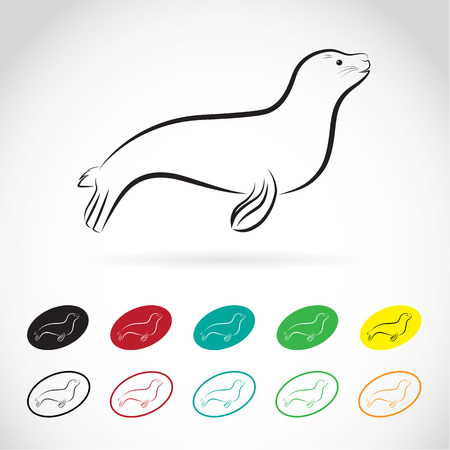Vector images of sea lion on a white background Vector