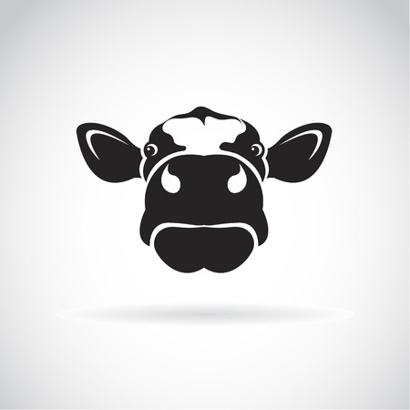 cow cartoon: Vector image of an cow head on white background